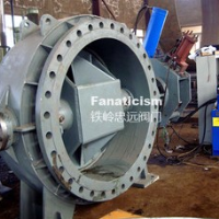 Large diameter turbine inlet valve power station valve