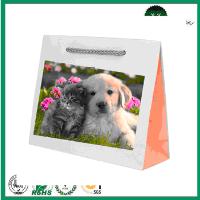 wholesale luxury paper shopping bag&folded shopping paper bag&custom printed paper bag
