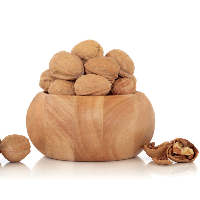Top quality Chinese Walnut in shell