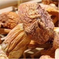 wholesale Chinese dried matsutake mushroom