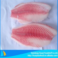 China Tilapia Fillets Exporters