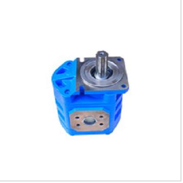 CBGJ2080 Oil pump, FL956, FL958 wheel loader spare parts, construction machinery parts
