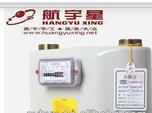 Steel Case Diaphragm Gas Meter G1.6