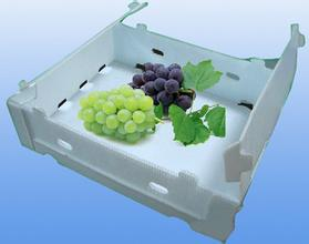 plastic hollow board fruit box