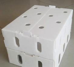 Factory direct for uv-protection plastic correx fruit boxes/sheet