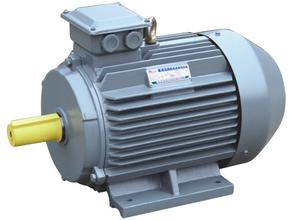 YE3 Series Super High EfficiencyThree Phase Asynchronous Electric Motor