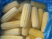 Frozen Yellow Maize (Sweet Corn)