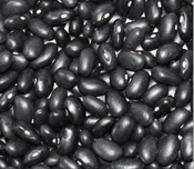 Black Kidney Bean