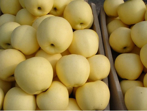 Yellow Apples, Fresh Fruits
