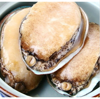 Dalian dried abalone-big-wild 500g