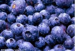 bule raspberry