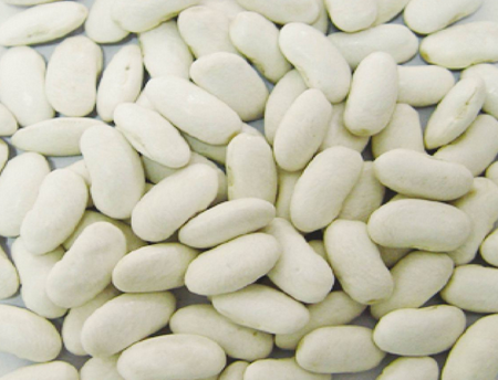 White Kidney Beans, Long Shape