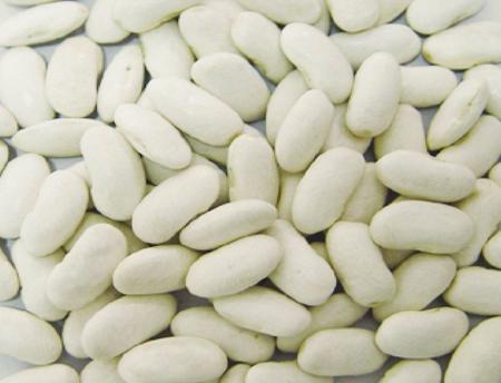 White Kidney Beans, Long Shape