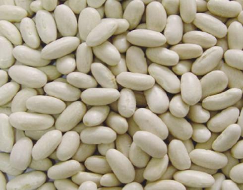 White Kidney Beans, Baishake Type