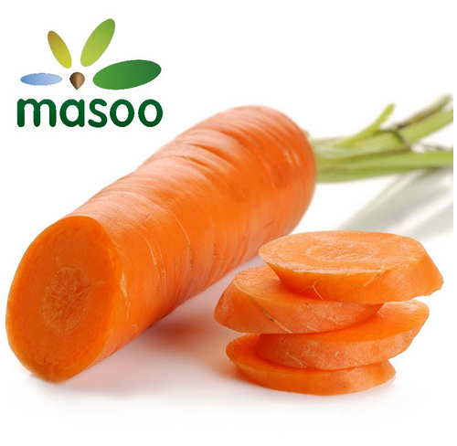 Cheap High Quality Fresh Carrot From Shandong (China) (Wholesale)