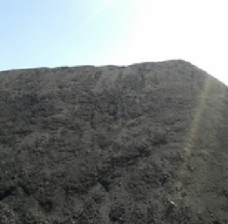 petroleum coke as fuel grade