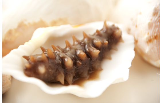 Semi dry sea cucumber