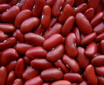 Dark Red Kidney Beans (2012 crop)