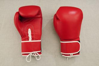Boxing Gloves (SC-8311)