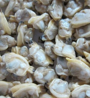Frozen Boiled Short-Necked Clam Meat