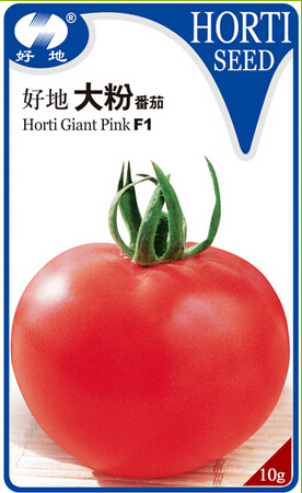 Hybrid best seeds tomato from Dalian