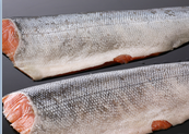 Specifications Pacific Red Fish Fillets  Pacific red fish fillets (SEBASTES ALUTUS)  Skinless, boneless, PBO, IQF, N.W. EU C