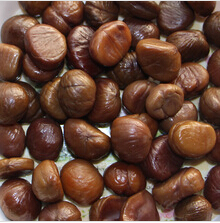 Sweet chestnuts/Peeler chestnuts/Chinese chestnuts