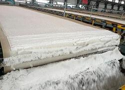 Horizotal Belt filter cloth,vertical belt filter cloth,tower press cloth
