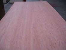 Package Poplar Plywood