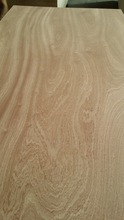 red Sapele rotary cut veneer plywood