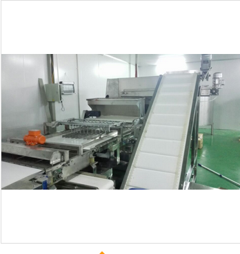 atuomctic sprinkling machine
