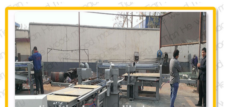 3*6/4*8ft automatic trim saw,trimming saw machine,plywood trimming saw,plywood production line,auto trim saw machine for plywood