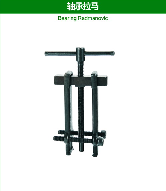 Bearing Radmanovic