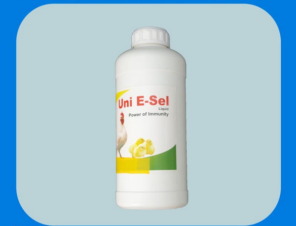 GRD high quality vitamin E+Se oral liquid for animals