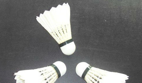 Excellent duck feather shuttlecock badminton for sale(TAYOD No.25)