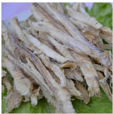 FD blue whiting fillet