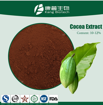Factory organic pure indonesia cocoa bean extract powder bulk low price free sample natural alkalized cocoa powder