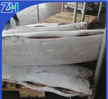 seafrozen blue marlin fish new stock