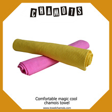 Summer hot day pet care chilly pad