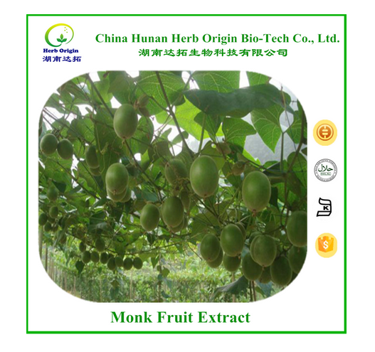 Factory Supplier Luo Han Guo Extract/Luo Han Guo P.E. for Sweetnener