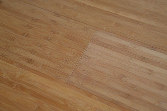 Solid Bamboo Floor