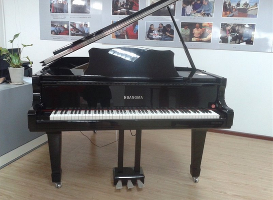 Wholesale ebay hot sale 88key digital portable roll up piano