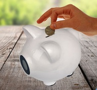 Quite cute of piggy bank that counts money multicolors for choose