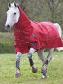 New Style Waterproof Horse Rug