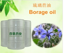 factory wholesale Borage oil massage Spa carrier oil
