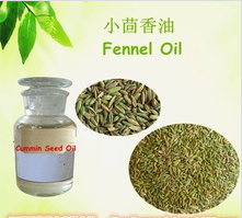 Natural Essential Fennel Seed Oil Fennel Oil