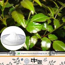 Factory wholesale free sample anti-hangover natural organic Ampeloptin