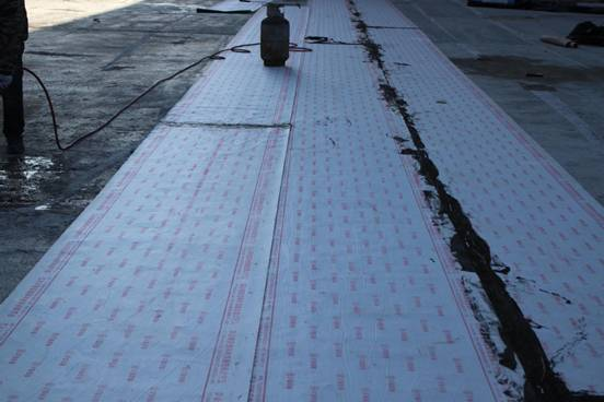 DCP reactive adhesive polymer wet installed waterproofing sheet