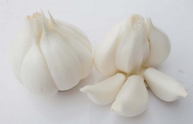 2014 crop pure white garlic