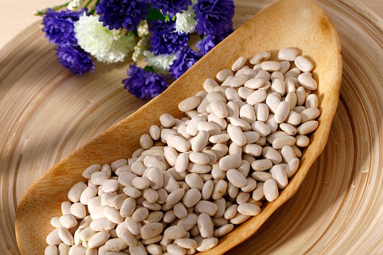 white bean,white kidney beans,medium white kidney